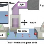 university-miami-researchers-optimize-4d-polymer-printing-photochemical-microreactor-2